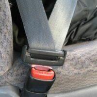 602535_seatbelt-sxchu-website-thumb-225x300-490111
